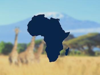 DMC's Afrika | DMCForward 351x263
